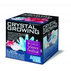 Dyrk dine egne krystaller - Lille - 4M