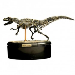 3D dinosaur puslespil - Acrocanthosaurus - Spiegelburg