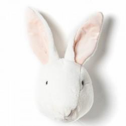 Brigbys dyretrofæ - Kanin