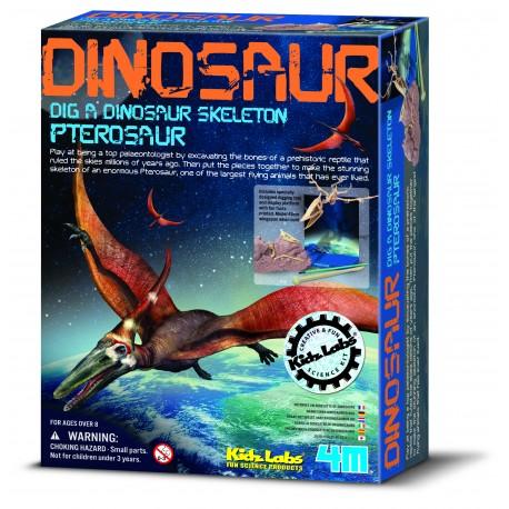 Pterosaur skelet - KidzLabs