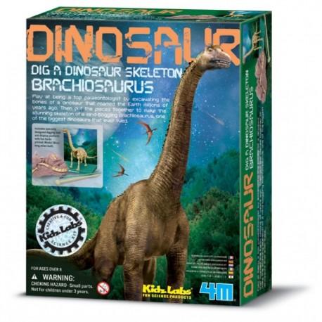 Udgravningssæt - Brachiosaurus dinosaur - KidzLabs