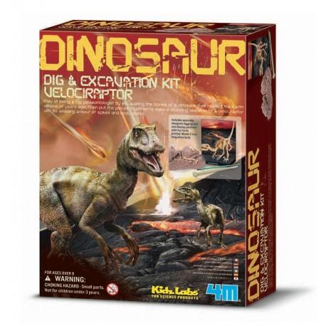 Udgravningssæt - Velociraptor dinosaur - KidZLabs